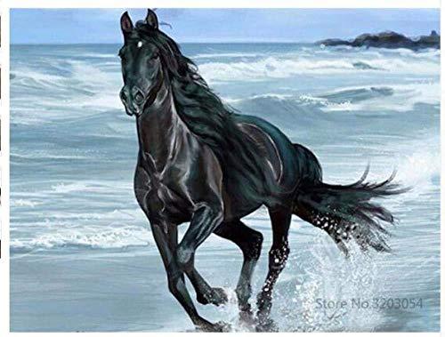 LSDEERE Malen nach Zahlen Erwachsene Kinder DIY Ölgemälde Laufendes Pferd am Meer 40x50cm Digitale Leinen Leinwand Neujahr Geschenk Haus Dekor Anfänger Kinder