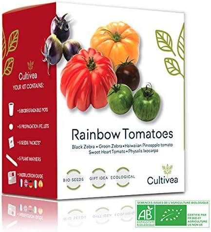 899 opinioni per Cultivea- Mini Kit Pronto a crescere Pomodori Colorati- 100% semi Bio-