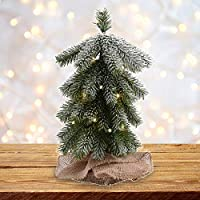 Fashionlite 21.6 Inch Mini Christmas Downswept Pine Tree with Burlap Base, 15L Clear Lights, Xmas Artificial Pine Tree with Snow Covered for Home Decor