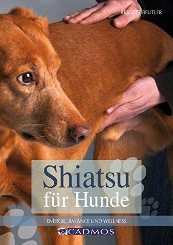 Shiatsu für Hunde: Energie und Balance