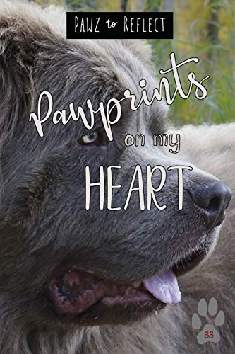 Pawprints On My Heart 33: Glossy Photo Cover Detail of Plush Grey Fur, 6'x9' journal with 160 lined pages for Animal Lovers (Pawz to Reflect Journals)
