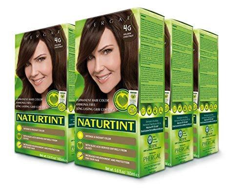 Naturtint Permanent Hair Color - 4G Golden Chestnut, 5.28 fl oz (6-pack) by Naturtint