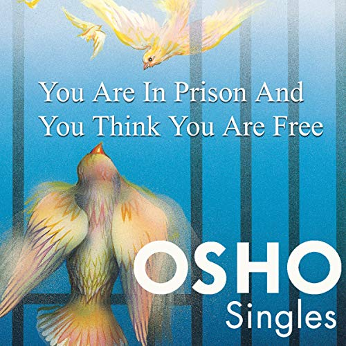 You Are in Prison and You Think You Are Free cover art