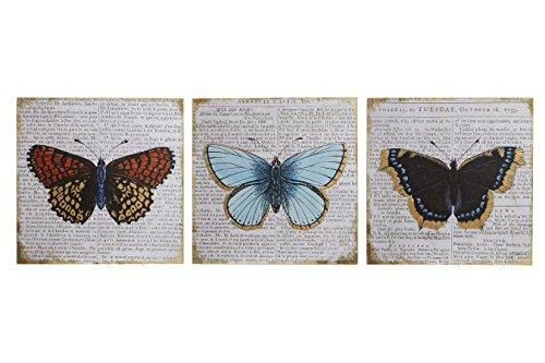 Premier Housewares vlinder wandafbeelding sjablonen – meerkleurig, set van 3