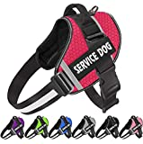 JSXD Dog Harness,No-Pull Service Dog Harness with Handle Adjustable Outdoor Pet Dog Vest 3M Reflective Nylon Material Vest for Breeds,Easy Control for Small Medium Large Dogs
