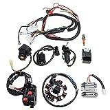 LSS-MDS Cableado eléctrico cableado eléctrico Telar CDI estator del motor del sistema completo en forma for el ATV QUAD 150/200 / 250CC Motocicleta Accesorios Accesorios de motos