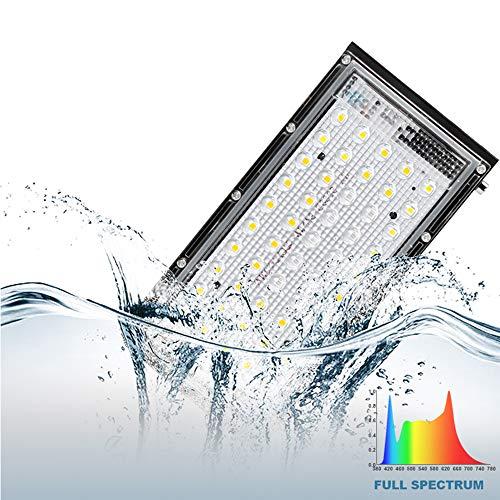 WUIO Indoor LED Grow Light, 800W Phyto Lampe Vollspektrum Lampe Für Pflanzen Grow Zelt Licht Für Pflanzen Warmweiß wasserdichte LED Lampe