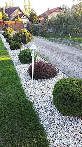 4mybaby GmbH Best for Garden Pierres de galets écologiques en gravier écrasé naturel - 16 à 32 mm - Au choix : 10 kg-500 kg - Multicolore