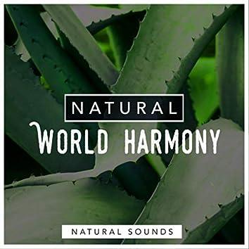 Natural World Harmony