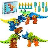 Juguete Dinosaurio,DIY Dinosaurio,Dinosaurios Juguetes para Niños ,Dinosaurios Juguetes para Niños con Caja de Almacenamiento ,Dinosaurios,Juego Creativo y DIY Juguetes (4 Piezas)