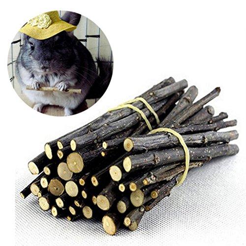 Hearsbeauty natur Holz Kauen Sticks Zweige für kleine Haustiere Kaninchen Hamster Meerschweinchen Spielzeug - 2