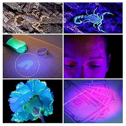 LEDGLE LED UV Flashlight UV Beast Pet Urine Finder Stain Detector Black Lights Torch, 100 LED Beads, with Lanyard 5