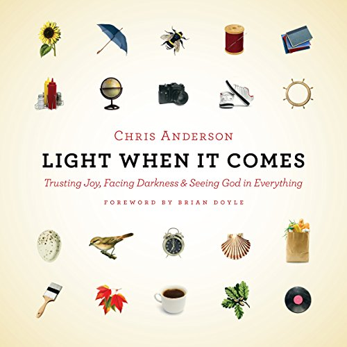 Light When It Comes audiobook cover art