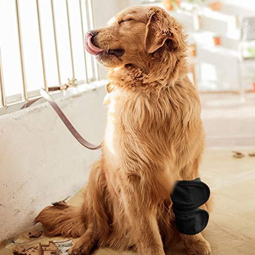 Eulbevoli Ellenbogenschutz für Hunde, verhindert Lecken und vermeidet Infektionen, universell für Katzen und Hunde, Hundewiederherstellungswerkzeug(Black, M)