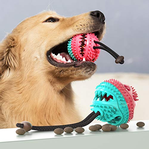 LCB Haustier Spielzeug Hundesnack Ball Hundefutter Verteilung Zahnreinigung Kauspielzeug Hund Zahnpasta Hund Trainingsball, Pet Supplies