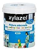 Xylazel M289648 - Pintura airesano efecto pizarra 750ml-blanco