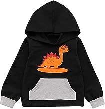 0-3 Months Baby Girl Boy Clothes,Toddler Kid Baby Boy Hooded Sweatshirts Blouse Cartoon Dinosaur Print Tops