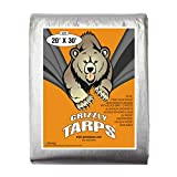 B-Air Grizzly Tarps - Large Multi-Purpose, Waterproof, Heavy Duty Poly Tarp Cover - 10 Mil Thick (Silver - 20 x 30 Feet)