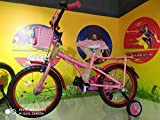 "Bsa Kids Champ Flora 16"" Bicycle (Multicolor)"