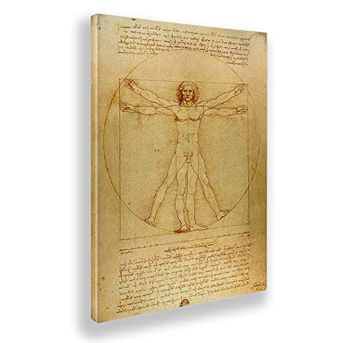 Giallobus - Pinturas - Leonardo Da Vinci - Hombre de Vitruvio - Lienzo - 50x70 - Listo para Colgar - Cuadros Modernos para el hogar