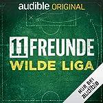 Flg. 3 - Fahri Yardim über Hoeneß, Hooligans und Hamburger Fußball-Ambivalenz. Zu Gast: Fahri Yardim