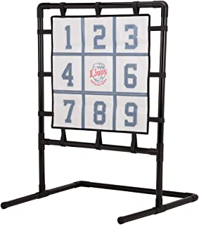 埼玉西武ライオンズ×GP(ジーピー) 野球 ストラックアウト マジックピッチング くっつき抜群 ボール12個付属 46301