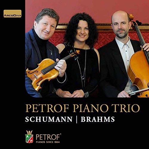 Piano Trio No. 1 in D Minor, Op. 63: III. Langsam, mit inniger Empfindung