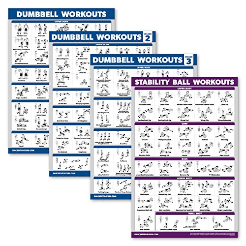 Palace Learning 4 Pack - Dumbbell Workout Posters Volume 1, 2 & 3 + Yoga & Stability Ball Exercise Chart - Set of 4 Posters (Laminated, 18' x 24')