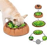 Schnüffelteppich Hund Dog Puzzle Toys Hund Snuffle Mat für Hunde Pet Sniffing Pad