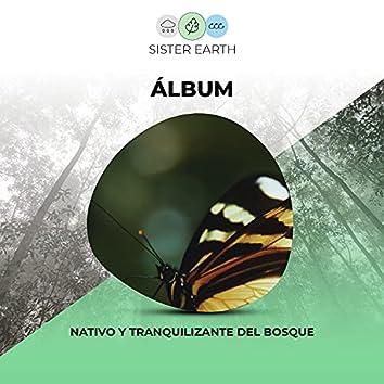 Álbum Nativo y Tranquilizante del Bosque