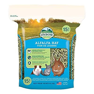 Oxbow Animal Health Alfalfa Hay, For Rabbits, Guinea Pigs, And Small Pets, Grown In The USA, Hand-Selected And Hand-Sorted, 15 Ounce by Oxbow Animal Health LLC
