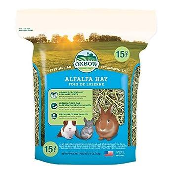 Best alfalfa hay for rabbits Reviews