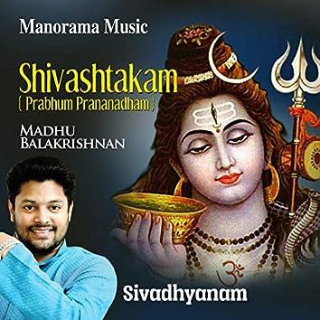 """Shivashtakam from """"Sivadhyanam"""""""