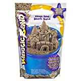Kinetic Sand-Beach Sand Arena de Playa, 1,4 kg, Color no se Puede aplicar, 1, 4 kg (Spin Master 6028363)