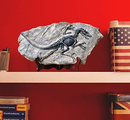 LAGOM HOUSE Dinosaur Fossil | Resin Dinosaur Skeleton Model / Skull / Statue / Bones / Figurines | T rex Skull Replica Fossils | Dinosaur Decor for Bookshelf | Desktop | Shelf Display 13x 7in