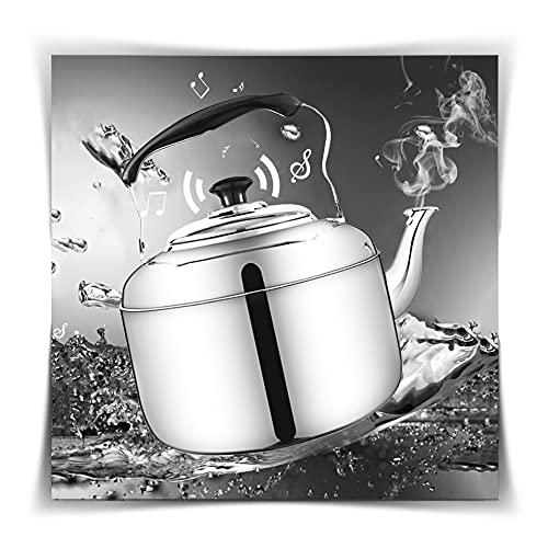 GAOWF Hervidor Silbido, Estufa De Gas Acero Inoxidable Cámping Tetera Regalos De Inauguración Tetera De Café Hervidor De Inducción por Placa De Inducción Eléctrica (Color : Silver, Size : 9L)