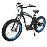 ECOTRIC Powerful Fat Tire Electric Bicycle 26' Aluminium Frame Suspension Fork Beach Snow Ebike Electric Mountain Bicycle 1000W Motor 48V 13AH Removable Lithium Battery