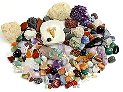 Rock, Mineral & Fossil Collection Activity Kit (125+ pcs and NO GRAVEL) with 2 Geodes, Ammonite, Shark Tooth in Matrix, Fossilized Poo, Arrowheads, Plus ID Sheet & Rock book, STEM Science Education
