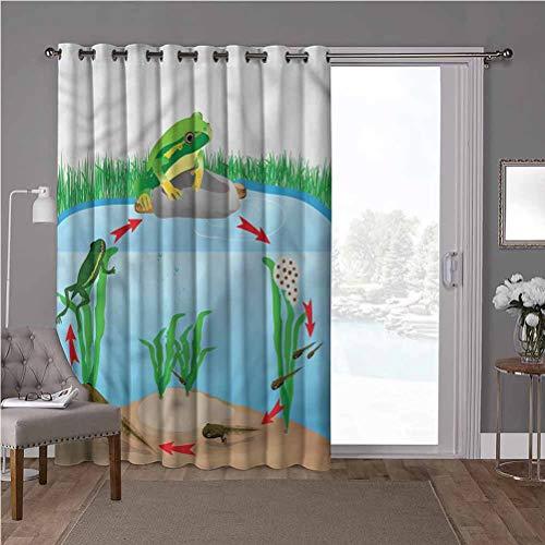 YUAZHOQI Cortina aislante térmica para oscurecimiento de habitación, animal, ciclo de vida de ranas trópicas, 100 x 200 cm de ancho x 200 cm de largo (1 panel)
