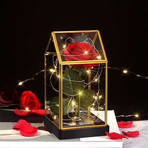 shirylzee Rosa La Bella e la Bestia,Rossa di Seta Rosa Artificiale Base in Legno LED luce Regalo per Il Giorno di San Valentino Compleanno Anniversario Matrimonio Natale Regalo di Festa della Mamma