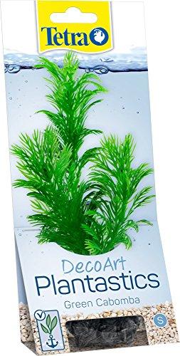 Tetra -   DecoArt künstliche