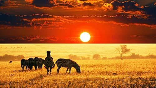 nonbranded Regalo de Rompecabezas de 1000 Piezas Sunset African Savanna