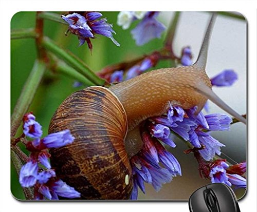 Vina Snail en Tree Mouse Pad, Tapis de Souris