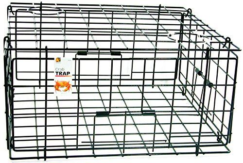 Best crab traps - Danielson Pacific FTC Crab Trap-24in x 24in x 13in,Blue