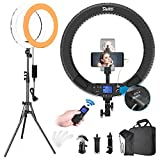 Switti 19 Inch LED Ring Light with Stand and Phone Holder, Bi-Color 3000K-5800K Large Circle Light Kit for Photography/Live Stream/Makeup/YouTube Video/TikTok/Blogging