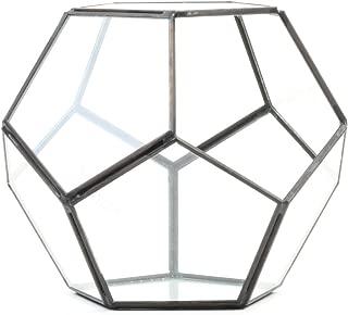 Koyal Wholesale Geometric Terrarium Glass Table Decoration, Planter for Succulents, Cactus, Air Plants, Indoor Plants, Outdoor Plants (Pentagon, Black)