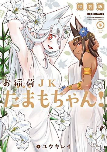 お稲荷JKたまもちゃん! (5) 特装版 (REXコミックス)の詳細を見る
