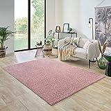 Carpet studio Ohio Alfombra de salón, 160 x 230 cm, alfombra para dormitorio, comedor y salón, fácil de limpiar, superficie suave, pelo corto, color rosa