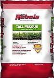 10. Pennington Rebel Tall Fescue Mixture Powder Coated Seed, 20 lb.