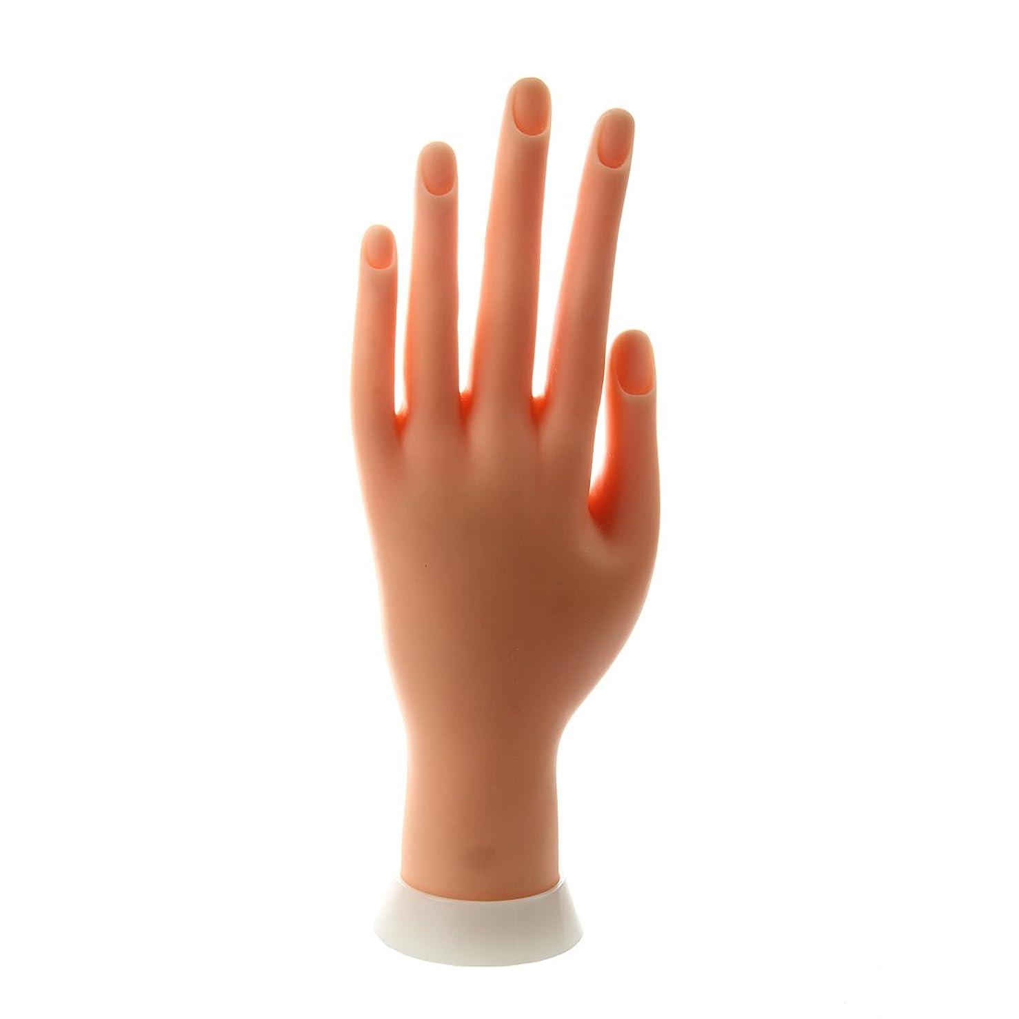 スムーズに教会ご予約SODIAL(R) ネイルアートの練習のためのモデル左手